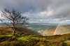 Perkin's Beach and Rainbows (C Noakes) Tags: explored explore beech lucky handheld storm spectacular beautiful rainbow landscape tokina 1224 14mm wide angle beach tree view magic moment rain nikon d7000 stiperstones shropshire light extreme sun afternoon heather clouds
