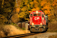 Acting Single (sdl39hogger) Tags: cp canadianpacific watertownsub emd electromotivedivision sd60 autumncolor autumn watertown wisconsin canon canont6i