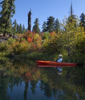 Kayak Imitating Vine Maple Color