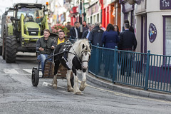 Ancient and modern (Frank Fullard) Tags: frankfullard fullard candid street portrait ancient modern contrast agriculture horse trap tractor farm machinery lol ballinasloe horsefair fair irish ireland equestrian transportation vehicle horsepower