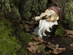 Clingendael - 's-Gravenhage (mariandeneijs) Tags: bos park clingendael landgoedclingendael