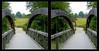 Longwood Gardens Walk 4 - Parallel 3D (DarkOnus) Tags: pennsylvania bucks county panasonic lumix dmcfz35 3d stereogram stereography stereo darkonus longwood gardens scenic scenery bridge trail path extreme hyper hyperstereo parallel