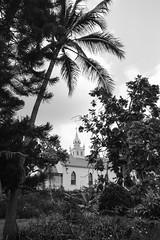 Mission Church (*~Dharmainfrisco~*) Tags: dharmainfrisco dharma hawaii big island kona mission church cemetery ocean beach waterfront palm trees sea usa 2015 travel trip