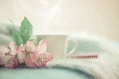 Take a breather (Ro Cafe) Tags: stilllife cozy cup flowers home pastelcolours tea nikkormicro105f28 nikond600 quiet peaceful still serene pink teal