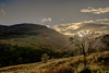An evening up the Glen (Dave Vowles) Tags: 2017 holiday lochlomond luss