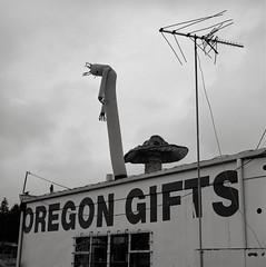 Gifts, Sutherlin, Oregon (austin granger) Tags: sutherlin oregon gifts sign antennae mushroom roadside travel inflatable posture rain mind eerie square film gf670