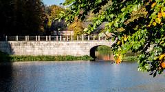 Die Brücke zum Schloss (p.schmal) Tags: olympuspenf ahrensburg schloss schlosspark herbst