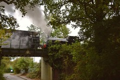 Resident Tank Loco, built by Hawthorn Leslie in 1919 and looking very nice after a 10 year overhaul crosses over Kiln Road bridge, on a positioning move. North Weald, Epping Ongar Railway 01 10 2017 (pnb511) Tags: northwealdstation eppingongarrailway trains heritage railway loco locomotive smoke steam autumnsteamgala road bridge trees brakevan train engine