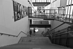 Staircase to the -1 floor (ricardocarmonafdez) Tags: arquitectura architecture perspectiva perspective urbano urban street urbanscape light shadows contraste contrast sunlight escaleras stairs staircase lineas lines canon 1785isusm 60d monocromo monochrome blackandwhite bw aveiro trainstation railwaystation
