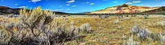 Rabbitbrush and Ghost Ranch (JoelDeluxe) Tags: rio chama riochama nm wildscenic river abiquiu santafenationalforest red beige tan mesa bluff soil plants landscape panorama hdr newmexico joeldeluxe