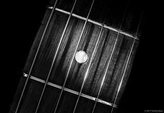 1964 Gretsch Guitar ©2017 Steven Karp