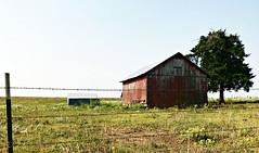 Another Barn Photo (pam's pics-) Tags: palmerkansas ks kansas us usa america midwest iphone7 cameraphone mobilephonephotography pamspics pammorris barn rural farm fence barbedwire