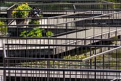 Lines (Wes Iversen) Tags: chicagobotanicgarden fencefriday hff hsos illinois linesandstripes smileonsaturday boardwalks fence fences flowerpots flowers pots railings water waterlilies glenview