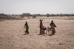 Rajasthan - Jaisalmer - Desert Safari traditional villiage-14