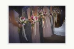 Ribbons and roses (Krasne oci) Tags: wedding ladies flowers flowerart bouquet ribbon bridesmaids women roses svatba artphotography love girls evabartos weddingbouquet ribbons lace