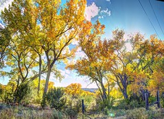 Abiquiu valley colors (JoelDeluxe) Tags: chama river valley abiquiu october 2017 fall colors cottonwoods riparian hdr panorama landscape nm newmexico joeldeluxe