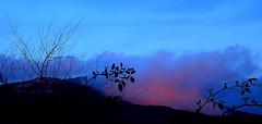 MOODY MOUNTAIN BLUES (Lani Elliott) Tags: nature naturephotography lanielliott view scene scenic mood moody foggy fog mist misty blue mountain mountwellington kunanyi landscape scenictasmania fantastic beautiful awesome incredible brilliant wonderful gorgeous excellent