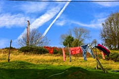 A good drying wind ~ HTT! (violetchicken977) Tags: telegraphtuesday telegraphpole powerlines washingline contrail