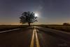 Big Oak Under the Stars (Jonathan Tasler) Tags: moon missouri tree stars milkyway night astrophotography nikond810 rural