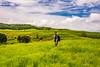 bhor16 (1 of 1) (rolixir) Tags: bhor greenary landscape natgeo