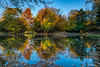 Simmetrie autunnali (marypink) Tags: autunno autumn fall riflessi reflection colori leaves colors water sky nikond800 nikkor1635mmf40