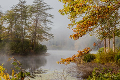 Morning at the Lake (Back Road Photography (Kevin W. Jerrell)) Tags: lakes water waterways chenoa bellcounty kentucky earlymorning nikond7200 backroadphotography fog serene fall autumn autumncolors autumnbeauty fallcolor