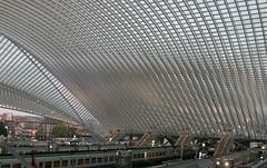 Station Luik-Guillemins (Roelie Wilms) Tags: stationluikguillemins station railwaystation luik liége belgië calatrava santiagocalatrava liègeguillemins