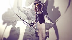 The fairy (Alegria Jaquemate) Tags: sl fairy coco secondlife doll limerence gachagarden barerose lesixevent serendipity