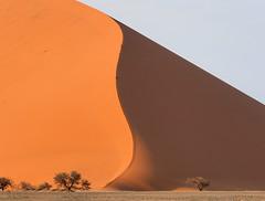Sand Dunes | P9203650-1 (:munna) Tags: sand dunes namibnaukluft national park namibia namib naukluft