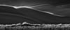 (Luminous☆West) Tags: sigma sd sdq sdqh quattro h sdquattroh foveon 85mm f14 14 dg art great sand dunes national park colorado blackandwhite bw monochrome blackwhite landscape 219 black white sdqh1387 luminouswest luminous west x3f