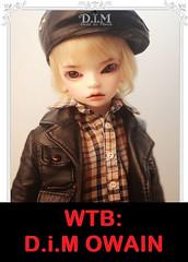 WTB: DiM Owain (☆Cydril☆) Tags: bjd doll mind owain dim dimdoll happy msd wtb
