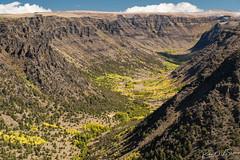 Big Indian Gorge (RWShea Photography) Tags: steens aspens oregon