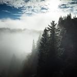 sunrise above the fog thumbnail