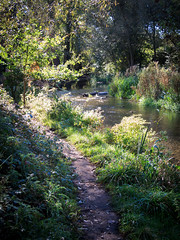 River Cray (mickmassie) Tags: loop londonloopsection2 rivercray