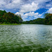 Gamboa Rainforest on Lake Gatun in Panama