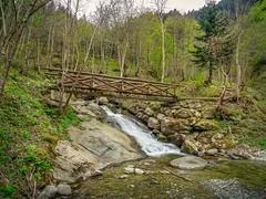 Wooden bridge (einaz80) Tags: wooden bridge ponte ponticello pesio valle valley valpesio pesiovalley stream ruscello cuneo cuneese piemonte piedmont italia italy