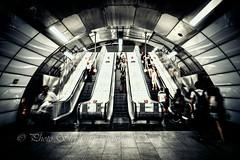 Tottenham Court Road Station (steff808) Tags: londres england royaumeuni gb uk london inglaterra angleterre tottenham metrostation nikond750 nikon24120