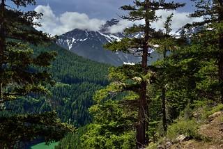 This Washington Land (North Cascades National Park Complex)