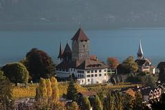 Schloss Spiez ( Baujahr Ursprung 10. Jahrhundert - château castello castle ) in Spiez am Thunersee im Berner Oberland im Kanton Bern der Schweiz (chrchr_75) Tags: christoph hurni schweiz suisse switzerland svizzera suissa swiss chrchr chrchr75 chrigu chriguhurni chriguhurnibluemailch oktober2017 oktober 2017 albumzzz201710oktober albumschlossspiez schlossspiez spiez kantonbern berner oberland berneroberland schloss château castle castello kanton bern thunersee alpensee see lake lac sø järvi lago 湖 albumthunersee