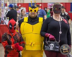 Grand Rapids Comic Con 2017 Part 1 17
