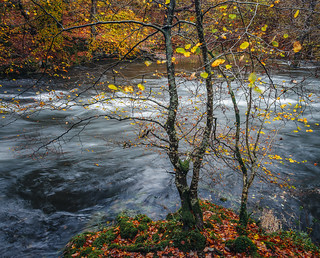 River Brathay - after the storm
