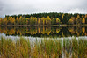 Autumn layers (Stefano Rugolo) Tags: stefanorugolo pentax k5 smcpentaxda1855mmf3556alwr autumn layers colors landscape reflections lake lakeside yellow hälsingland sweden sverige tree forest wood radiotower reeds water sky cloudy fall