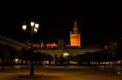_DSC891214-15-Editar (jsanchezq65) Tags: sevilla seville giralda patiobanderas nocturnas nocturna night nightscape nightcity nightlights longexposure