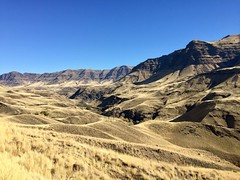 Imnaha to Hells Canyon Overnighter (Doug Goodenough) Tags: bicycle cycle bike surly ecr bikepacking packing oregon imnaha canyon canyons vista fall foliage leaves color snake river 29 plus pedals spokes october 2017 17 drg53117 drg53117p drg53117pfallimnaha drg531