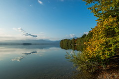 Beautiful autumn morning (impossiblejoker) Tags: herbst herbstlaub nebel bayern lake autumn mist bavaria bay mountains forggensee reflection alpen d610 nikon