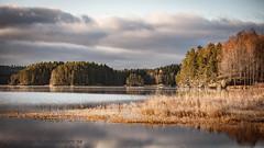 20171103003137 (koppomcolors) Tags: koppomcolors österwallskog värmland varmland sweden sverige scandinavia