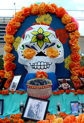 Floral-Eyes For the Departed (Robb Wilson) Tags: grandpark losangeles dayofthedead floralarrangement flowereyes largeskull
