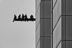 still having lunch break (Leipzig_trifft_Wien) Tags: lunch break rest breakfast site people person workers humans building city erection new york black white monochrome architecture beam grey bw street atop ebbets 1932