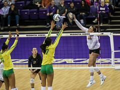 UW Oregon-FT4I9822 (Pacific Northwest Volleyball Photography) Tags: volleyball ncaa pac12 uwhuskies washington oregon