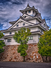 鳥取城 画像6